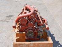 Двигатели -  Двигател Iveco 4 цилиндър * НОВ *